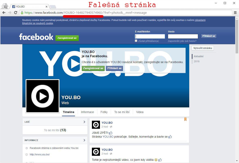 fake_youbo2 kopie
