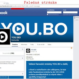 fake_youbo4 kopie